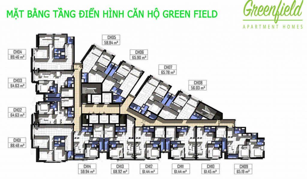 mat bang tang greenfield 686