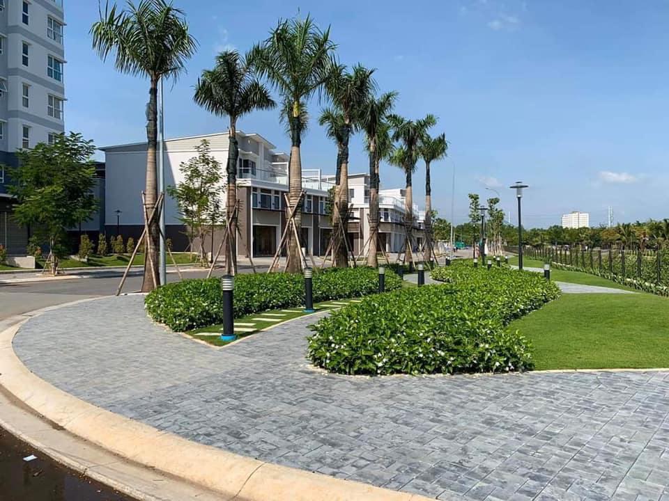 cong-vien-cay-xanh-tai-mizuki-park