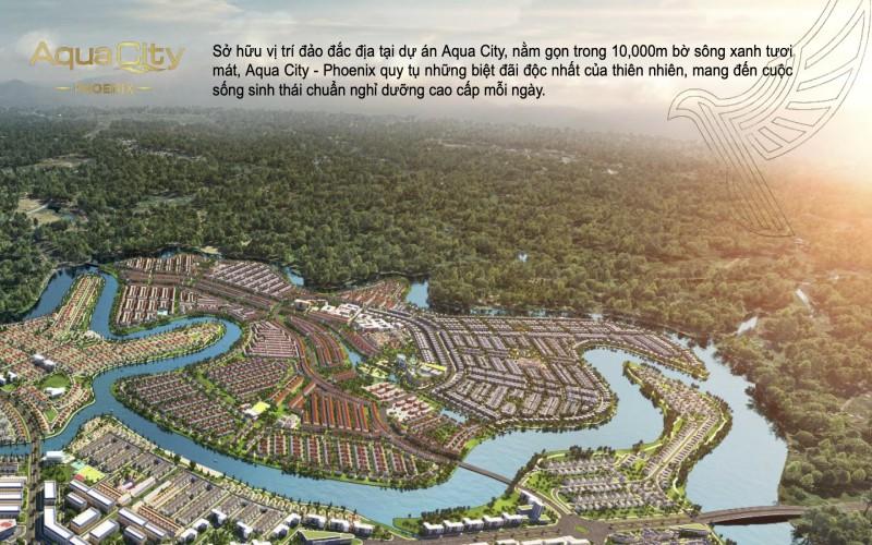 phoi canh phan khu dao phuong hoang aqua city
